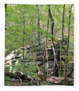 Sticks And Stones Along The Way Fleece Blanket