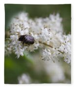 Stiff Dogwood Wildflowers And Beetle Fleece Blanket