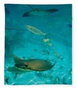 Stingray And Fish Fleece Blanket
