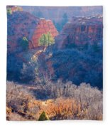Stone Quarry At Red Rocks Open Space Fleece Blanket