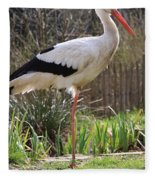 Stork Fleece Blanket