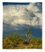 Stormy Desert Skies  Fleece Blanket