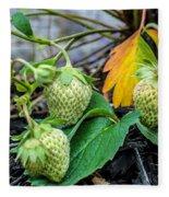 Strawberries - Soon To Be Picked Fleece Blanket