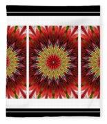 Strawberry Explosion Triptych - Kaleidoscope Fleece Blanket