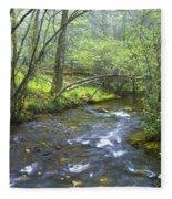 Stream Below Amicalola Falls Fleece Blanket