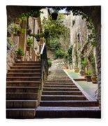 Streets Of Pisa Fleece Blanket