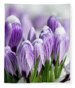 Striped Purple Crocuses In The Snow Fleece Blanket
