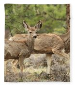 Strolling Through The Rockies Fleece Blanket