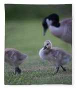 Strutting Our Stuff Fleece Blanket