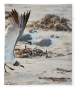 Strutting Seagull On The Beach Fleece Blanket