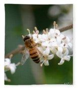 Study Of A Bee Fleece Blanket