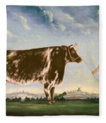 Study Of A Shorthorn Fleece Blanket