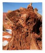 Stumped At Monument Valley Fleece Blanket
