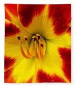 Stunning Daylily  Fleece Blanket