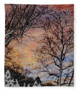 Stunning Painted Fleece Blanket