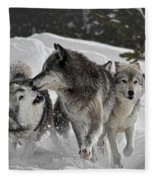 Submission Fleece Blanket