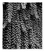Succulent 4 Fleece Blanket