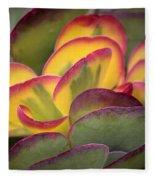 Succulent Light Fleece Blanket