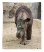 Sumatran Rhinoceros  Fleece Blanket