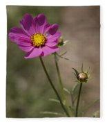 Summer Cosmos Fleece Blanket