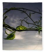 Summer Green Fleece Blanket