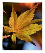 Summer Japanese Maple - 2 Fleece Blanket