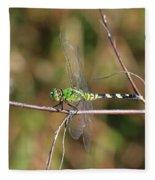 Summer Pondhawk Dragonfly Fleece Blanket