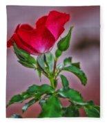 Summer Rose Fleece Blanket