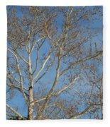 Summer Sky Winter Day Fleece Blanket