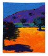 Summertime Fleece Blanket