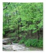 Summertime Walnut Creek Fleece Blanket