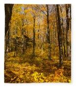 Sun Dappled Autumn Forest  Fleece Blanket