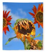 Sun Drenched In Autumn By Diana Sainz Fleece Blanket