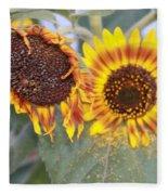 Sun Flowers Fleece Blanket