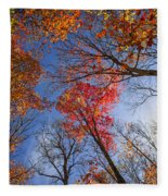 Sun In Fall Forest Canopy  Fleece Blanket