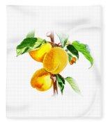Sun Kissed Apricots Fleece Blanket