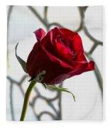 Sun Kissed Rose Fleece Blanket