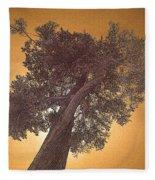 Sun Tree Fleece Blanket