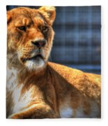 Sunbathing Lioness  Fleece Blanket