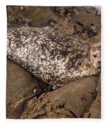 Sunbathing Sea Lion Fleece Blanket