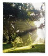 Sunbeam Landscape Fleece Blanket