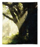 Sunbeam Tree Fleece Blanket