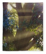 Sunbeams In The Tree Fleece Blanket