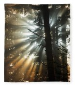 Sunbeams Through Trees Fleece Blanket