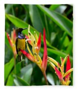Sunbird On Heliconia Ginger Flowers Singapore Fleece Blanket