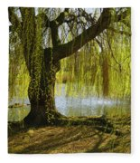 Sunday In The Park Fleece Blanket