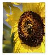 Sunflower And Bee-3922 Fleece Blanket