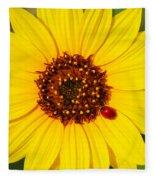 Sunflower And Ladybird Beetle 2am-110490 Fleece Blanket