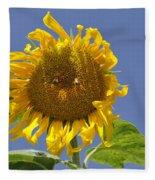 Sunflower At Latrun Fleece Blanket