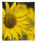 Sunflower Blossom Fleece Blanket